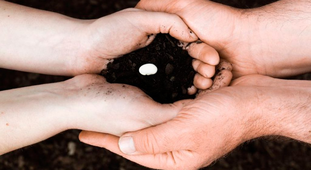 Donación de embriones - CIRH